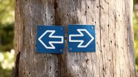 flexで画像を左右交互に配置するレイアウトを実現する方法